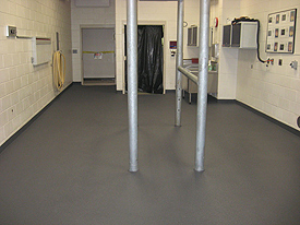 Veterinary Flooring and Animal Recovery Flooring